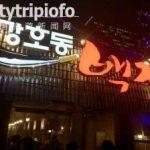 韩国烤肉姜虎东