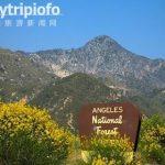 """洛杉矶的""""后花园""""-安琪拉国家森林 Angeles National Forest"""
