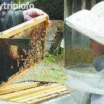 美国体验农家乐 劳动大众享亿万富豪生活