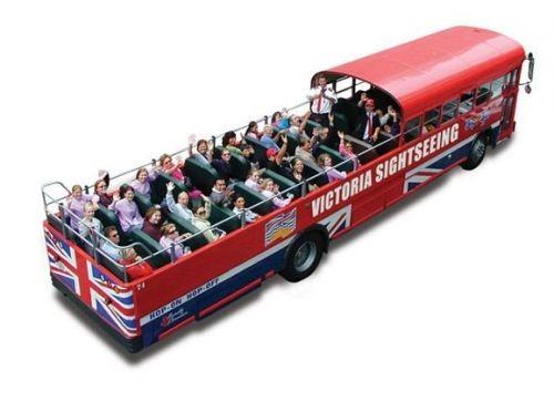 公车上的奇特旅行 下一站天堂加拿大