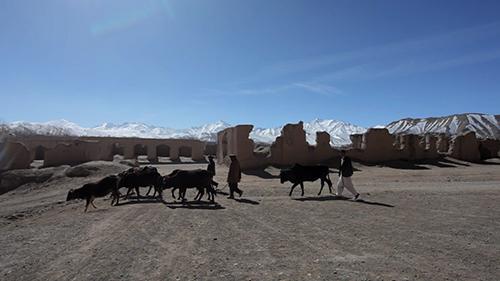 游世界|阿富汗巴米扬 被世界遗忘的「桃花源」!