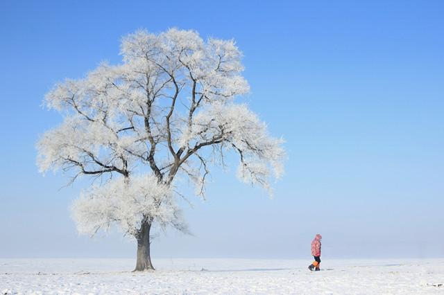 专题企划|游大陆|不能错过! 大陆12月最美旅行地~