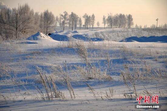 自然奇观|内蒙古再现-40℃极寒 雾淞演绎冰雪童话!