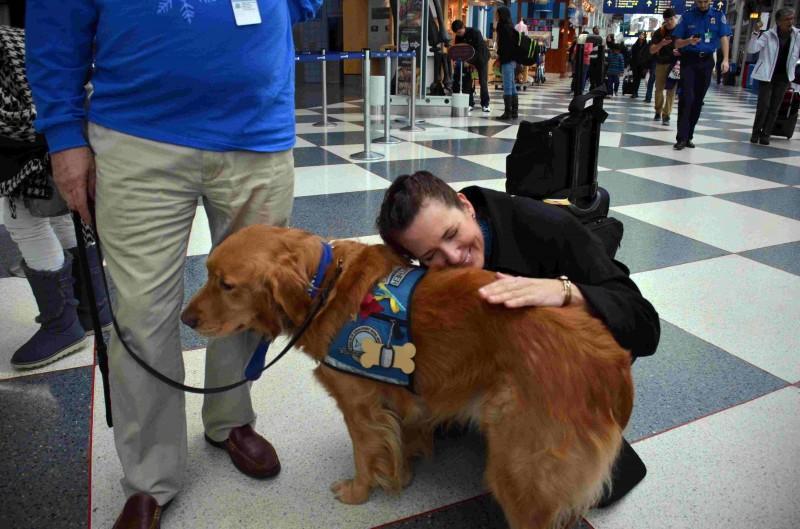 减轻圣诞假期搭机压力?美机场派黄金猎犬减压!
