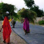 去印度并非如你想象般美好 单身姑娘该知道的六条锦囊(图)