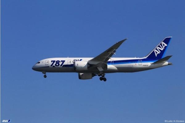 《全日空机队规模将达305架 35%用于国际航线》
