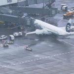起飞后机内现异响 竟是装卸工人困在货舱