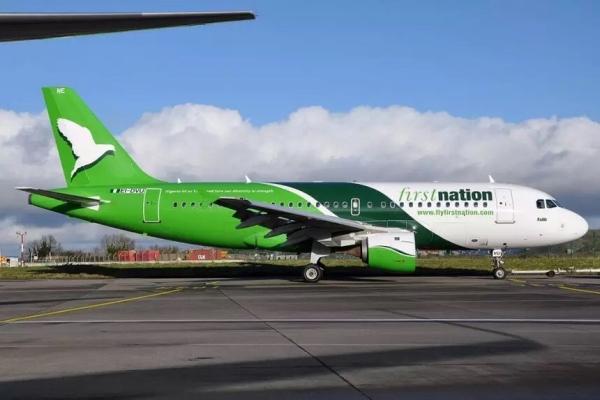 尼日尼亚两架飞机发生机翼刮擦 未造成伤亡