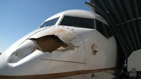 《小小飞鸟大麻烦 FAA考虑加强飞机防护标准》