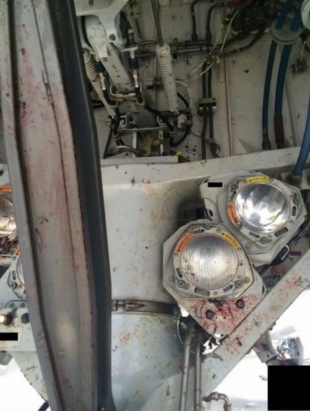 卡塔尔航空787遭遇鸟击 飞机机身血迹斑斑