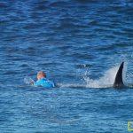 世界冲浪冠军的鲨口逃生秘籍