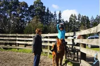 杨乐专栏 | 有马场的新西兰中学