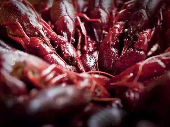 """芬兰""""龙虾趴"""" 北欧人民也爱小龙虾"""