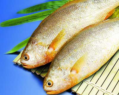 《8种家常鱼不能随便吃可要注意!》