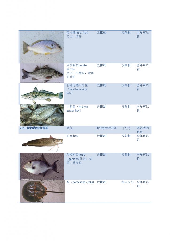 《2016纽约钓鱼法规说明 海钓不同鱼尺寸与数量》