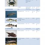 2016纽约钓鱼法规说明 海钓不同鱼尺寸与数量