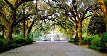 萨凡纳(Savannah)。(Jeff Gunn/Flickr)