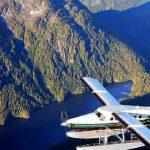 阿拉斯加观光飞机坠毁致9死